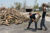 tree doc debris cleanup