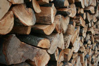 tree doc mulch sales