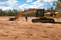 tree doc land clearing
